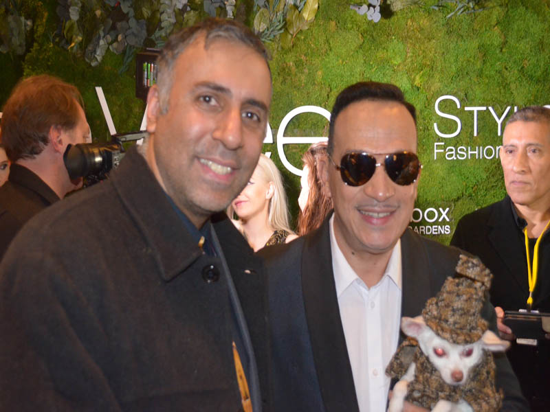 Dr.Abbey with Anthony Rubio Designs Dog Designer