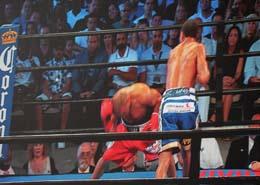 Italy VS USA Boxing