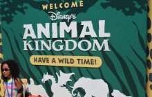 Disney's Animal Kingdom at Orlando Florida-2017