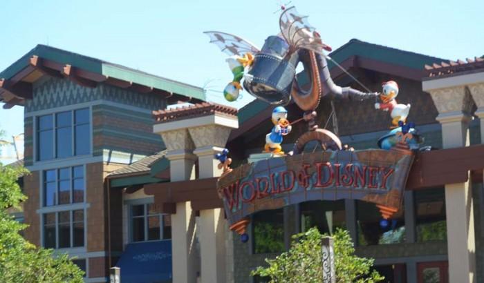 Disney's Resorts  Orlando Florida-2017