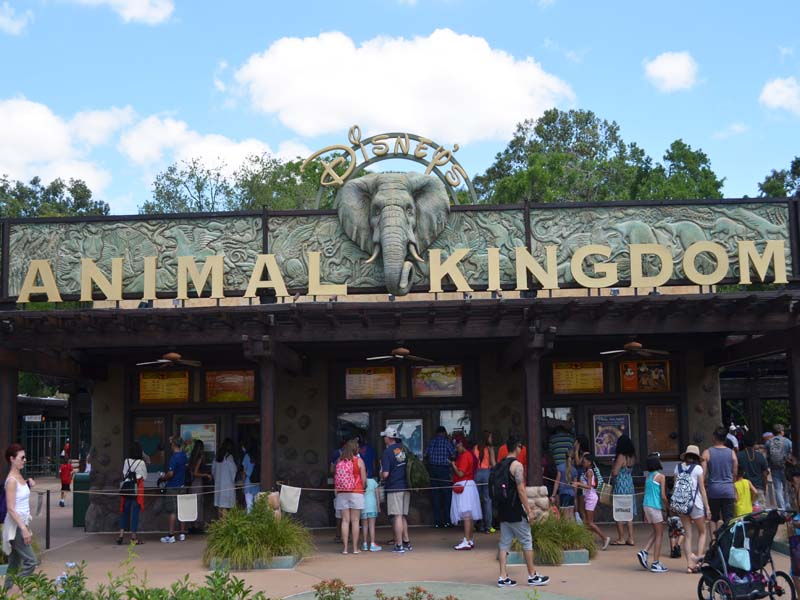 Animal Kingdom Disney Orlando Florida