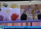 Ideation Fresh  Food Service Forum Chef Demo By Chef Scott Uehlein of Sonic Corp-2017