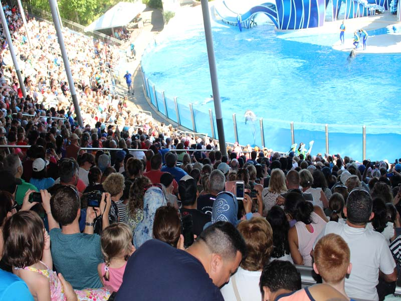 People at seaworld