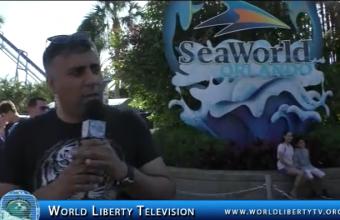Seaworld  Orlando Florida,Dolphin Sea lion & Whales Show-2018
