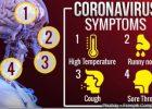 What is Coronavirus Disease  (COVID-19)-2020