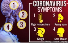 What is Coronavirus Disease  (COVID-19)-2020